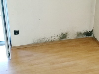 mietminderung wegen schimmelpilz in der wohnung. Black Bedroom Furniture Sets. Home Design Ideas