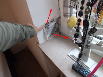 Bauschaden Schimmelpilz in Wohnungen Schimmel alle Zimmer